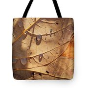 Fall Leaves And Dew 5 2017 Tote Bag