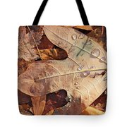 Fall Leaves And Dew 8 2017 Tote Bag