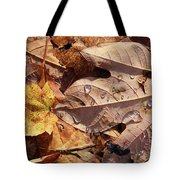 Fall Leaves And Dew 9 2017 Tote Bag