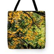 Fall Leaves In The Smokies Tote Bag