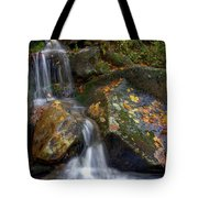 Fall Leaves Tote Bag by Photography by Laura Lee