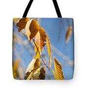 Fall Leaves Study 3 Tote Bag