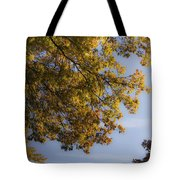 Fall Magic Tote Bag