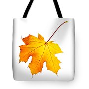 Fall Maple Leaf Tote Bag by Elena Elisseeva
