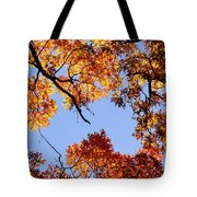 Fall Oak Leaves Up Above Tote Bag