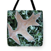 Fall On Ice Tote Bag