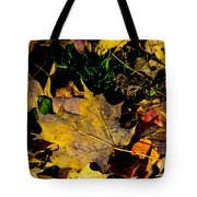 Fall On The Ground Tote Bag