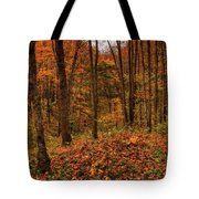 Fall On The Ice Age Trail Tote Bag
