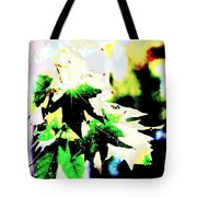 Fall Overture Tote Bag