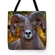 Fall Ram Tote Bag