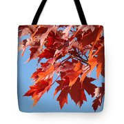 Fall Red Orange Leaves Blue Sky Baslee Troutman Tote Bag