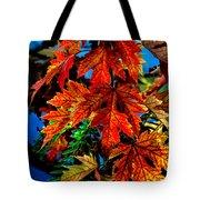 Fall Reds Tote Bag