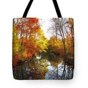 Fall Reflected Tote Bag