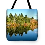Fall Reflections II Tote Bag