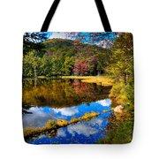 Fall Reflections On Cary Lake Tote Bag