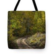 Fall Roads Tote Bag