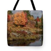 Fall Scene 3 Tote Bag