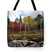 Fall Scene 4 Tote Bag