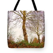 Fall Season At Its Best Tote Bag