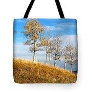 Fall Sentinels Tote Bag