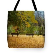Fall Series 13 Tote Bag