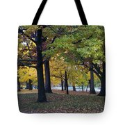 Fall Series 14 Tote Bag