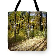 Fall Series 2 Tote Bag