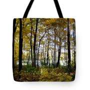 Fall Series 3 Tote Bag