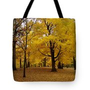 Fall Series 5 Tote Bag