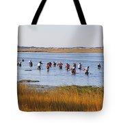 Fall Shellfishing Tote Bag
