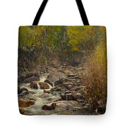 Fall Snow Storm Tote Bag