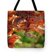 Fall Spiderweb Tote Bag