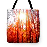 Fall Stroll Tote Bag