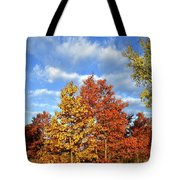 Fall Sunrise On Hackmatack Nwr Oaks Tote Bag