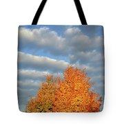 Fall Sunrise On Sugar Maple Along Route 31 Tote Bag