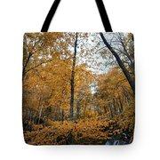Fall Tees At  Yankee Horse Overlook   Tote Bag