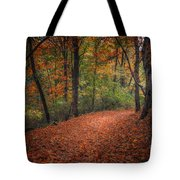 Fall Trail Tote Bag