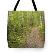 Fall Trail Scene 40 Tote Bag