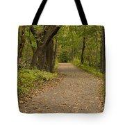 Fall Trail Scene 45 A Tote Bag