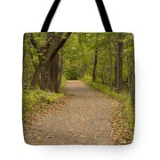 Fall Trail Scene 45 B Tote Bag