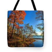 Fall Trails Tote Bag