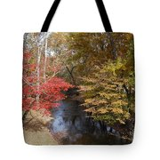 Fall Transition Tote Bag