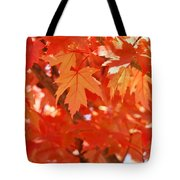 Fall Tree Art Autumn Leaves Red Orange Baslee Troutman Tote Bag