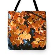 Fall Tree Art Prints Orange Autumn Leaves Baslee Troutman Tote Bag