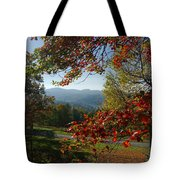 Fall Tree Colors II Tote Bag