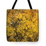 Fall Tree Leaves 2 Tote Bag