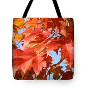 Fall Tree Leaves Art Prints Blue Sky Autumn Baslee Troutman Tote Bag
