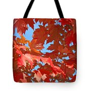 Fall Tree Leaves Red Orange Autumn Leaves Blue Sky Tote Bag
