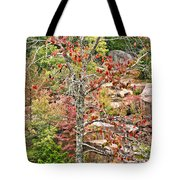 Fall Tree With Intense Colors Tote Bag