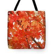 Fall Trees Colorful Autumn Leaves Art Baslee Troutman Tote Bag